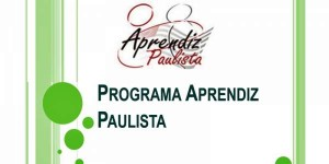 programa jovem aprendiz paulista